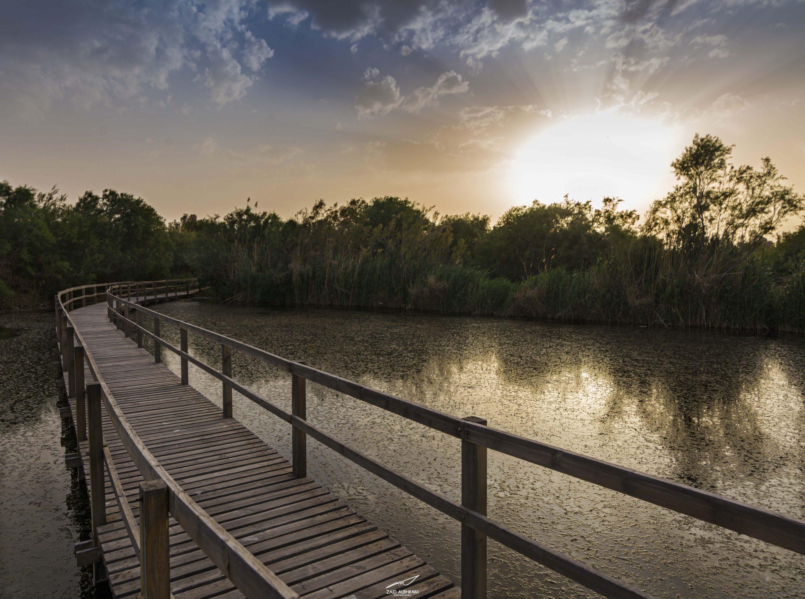 Al-Azraq Aquatic Reserve